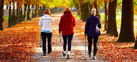 Nordic Walking - trend sport in the Bavarian Forest